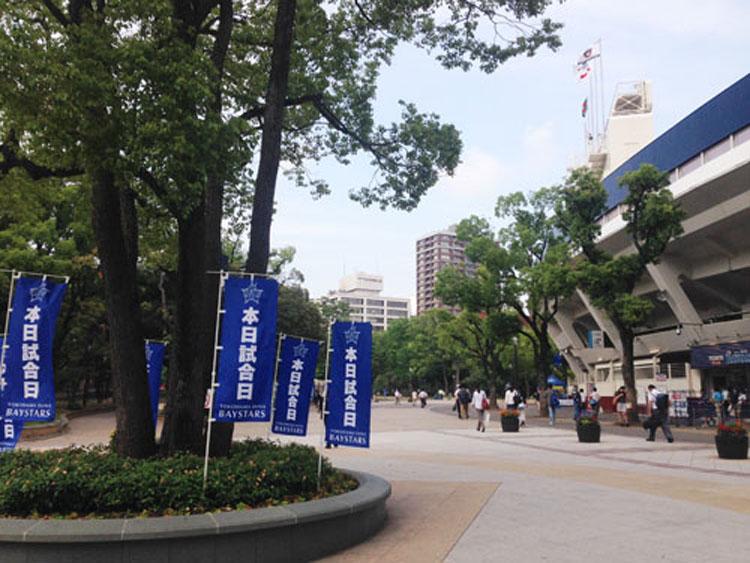 横浜ベイスターズのぼり旗03
