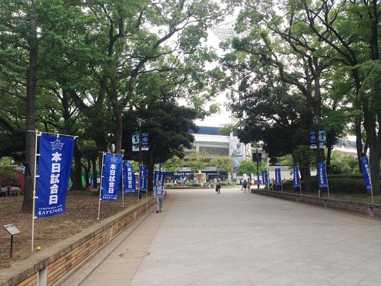 横浜ベイスターズのぼり旗02